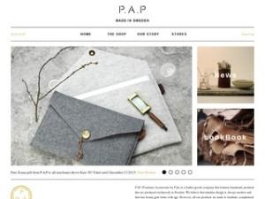 P.A.P Accessories