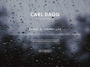 Carl Dagg